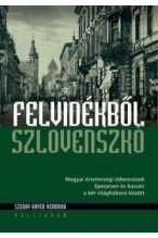 Szeghy-Gayer Veronika: Felvidékből Szlovenszkó - Magyar értelmiségi útkeresések Eperjesen és Kassán a két világháború között