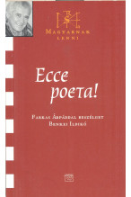 Ecce poeta! Magyarnak lenni 6.