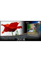 A Magyar Trikolor Tizenkét Hónapja 2018 A Nemzet Naptára