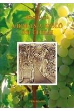A bor és a szőlő ősi titkai